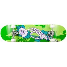 Скейтборд Playlife Skull Homegrown